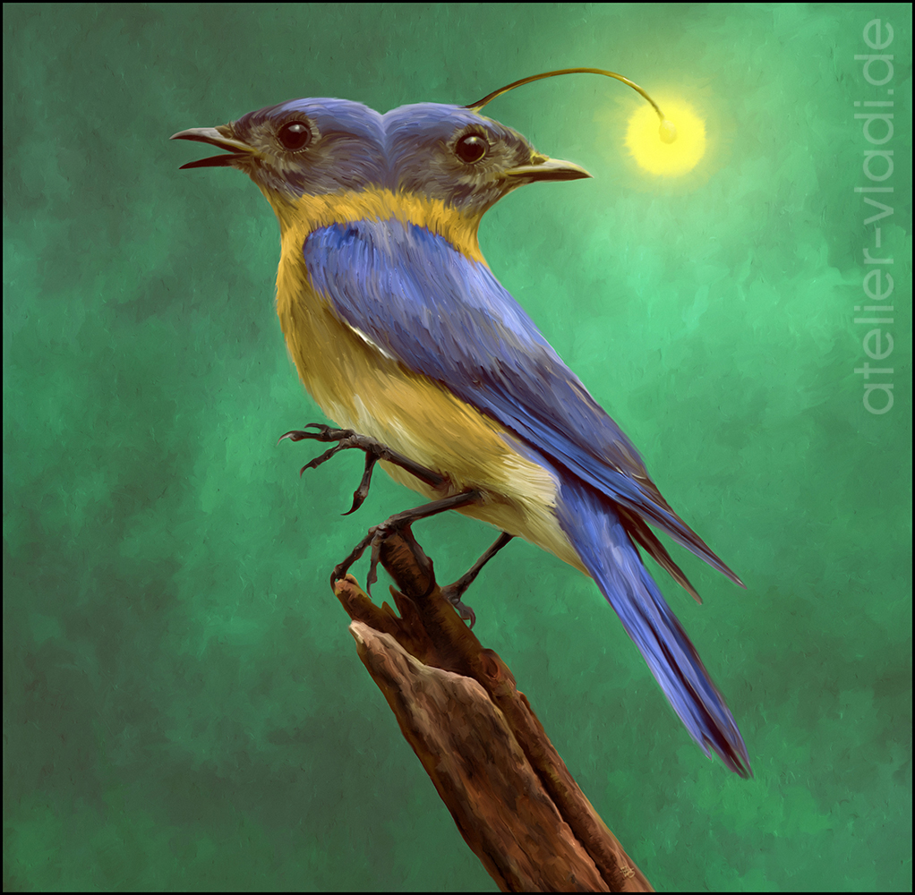Vögel Vogel Alien